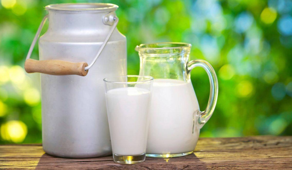 Mate de leche